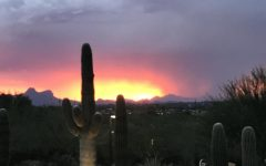 A look on Arizona's scenery and climate