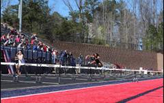 Track athletic profile: Haylee Sterling