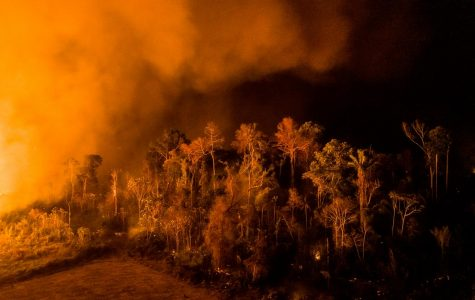 Amazon Rainforest fires are affecting Roswell more than we think