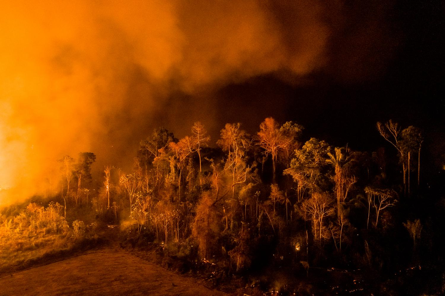 Fires set the Amazon Rainforest ablaze with strong winds. Photo Credit: Sebastián Liste for TIME