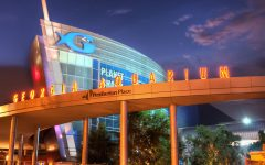 Why you should visit the Georgia Aquarium on your next trip to ATL