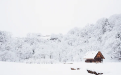 Georgia weather fails to precipitate a White Christmas, once again
