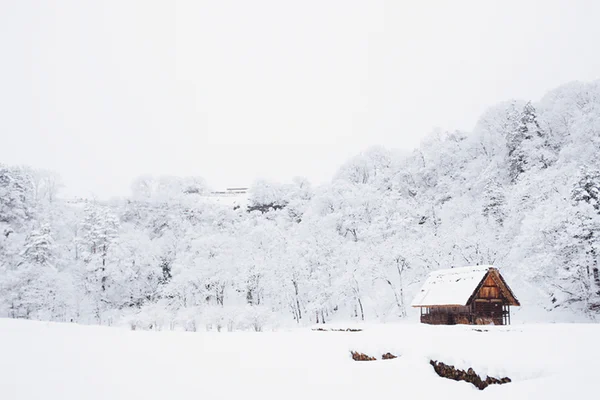 This is an example of one of the snowy houses that one would see in a movie that most people want to wake up to on Christmas morning. Credit: Unsplash