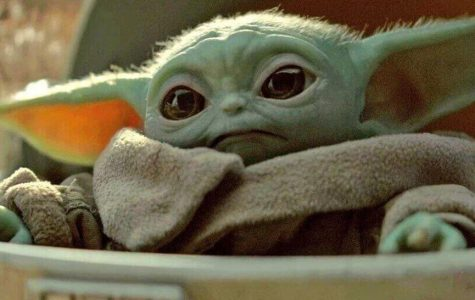 Despite timeline confusion, fans have still speculated that the cute green creature is in fact young Yoda. Credit: Cnet