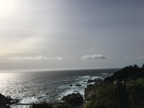 The rocky coast only a few miles from the infamous Big Sur. Photo Credit: Ava Weinreb