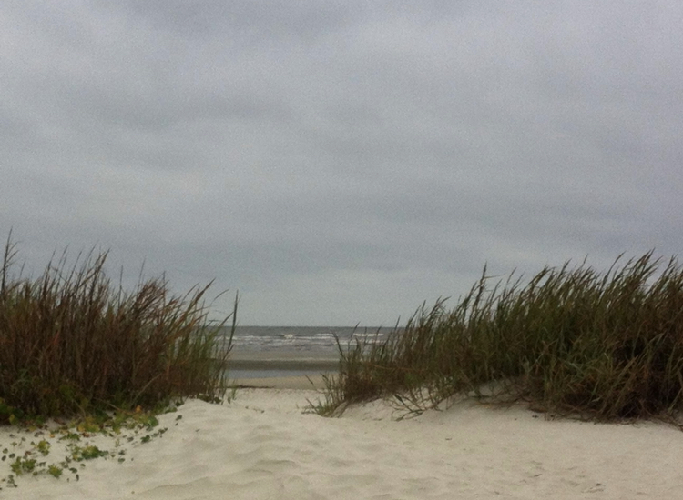 This+photo+was+taken+in+the+dunes+on+one+of+St+Simons%E2%80%99+many+beach+accesses.+Photo+Credit%3A+Ansley+Tanner