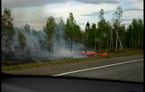 Swan Lake forest fire devastates Alaska