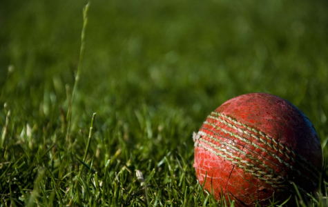 Roswell students spend their free time playing for their cricket league