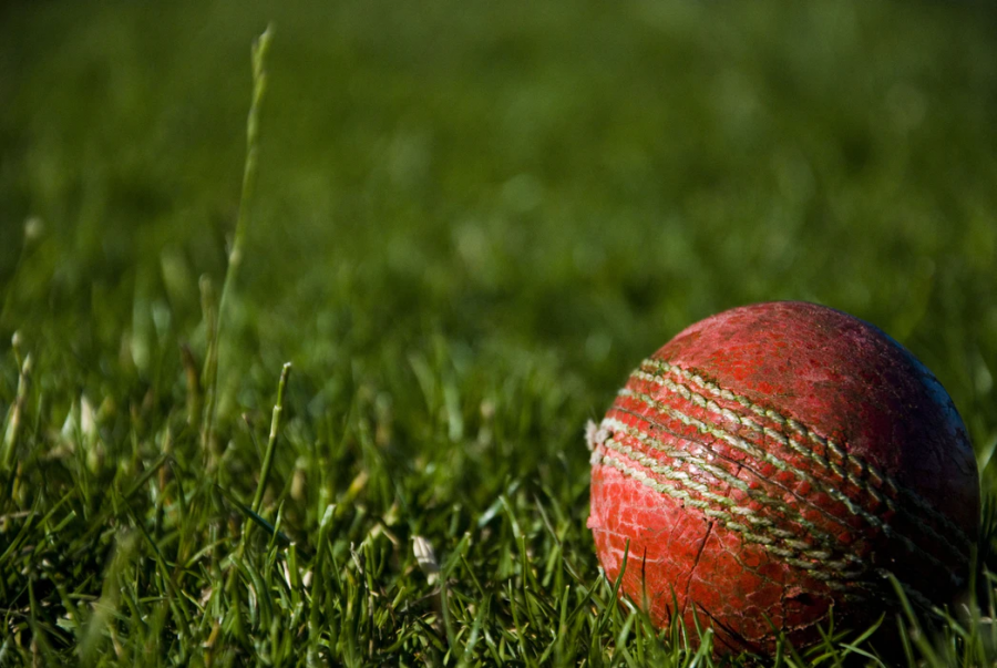"The above image is an example of a cricket ball; however, ""The Three Musketeers"" use a tennis ball. Photo Credit: Creative Commons"