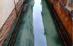 Waters are clearer than they have been in decades as Italy's shelter in place policy continues. Photo Credit: Marco Capovilla