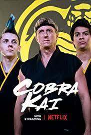 Cobra kai is a great series to respond to the original trilogy of Karate kid.