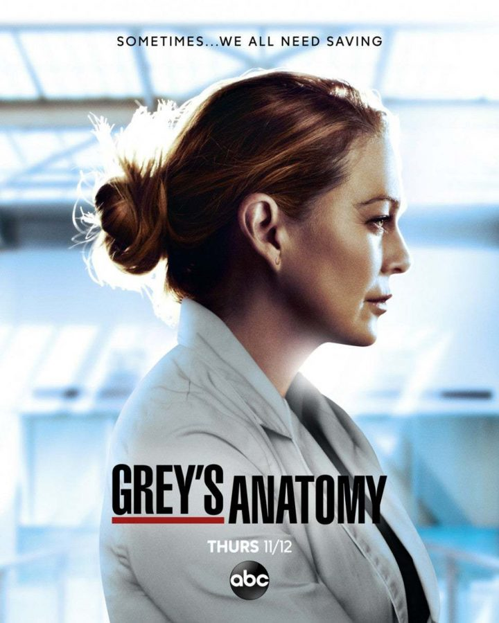 Season 17 Grey's Anatomy promotional suggests hard times ahead for characters.