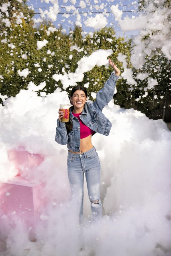 Advertisement from Dunkin Donuts Website of their new Charli Cold Brews with Sweet Foam. (Credit: Dunkin)
