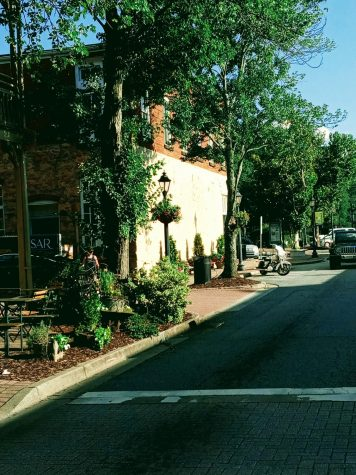 Take time to eat in the beautiful and small cafes located in canton street close to the Heart of Roswell Park. (Credit: Maynor Chinchilla)